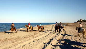 Horse riding trail in Agriates Desert on Corsica Island - Ride in France