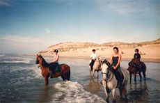 RIDE IN FRANCE - Canter on Medoc beach