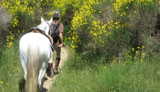 Equestrian holidays in Provence